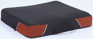 coussin-assise